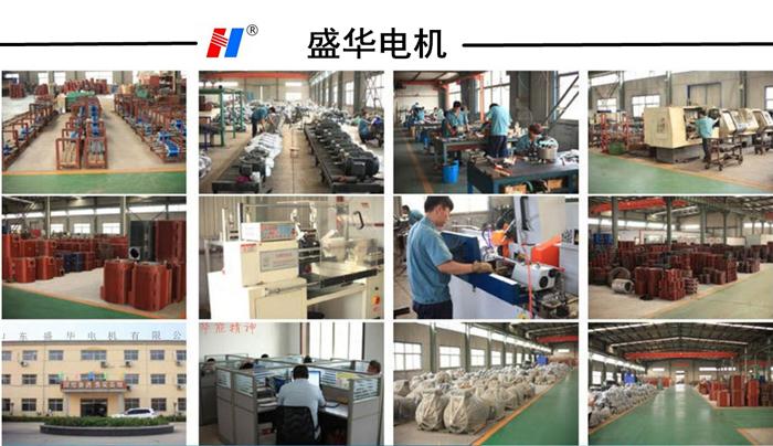山东电机厂,环保设备专用电机,电机定制