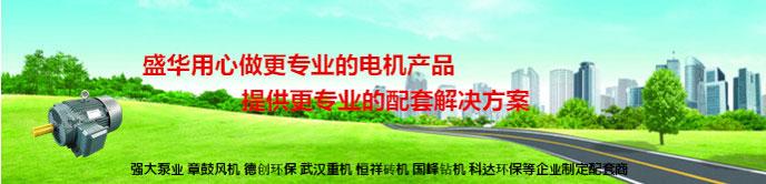 山东电机,山东电机公司,高原电机,高海拔电机,高原电机定制